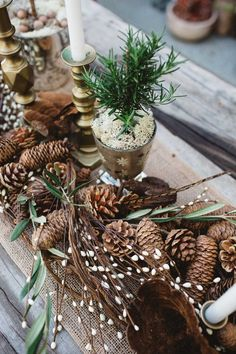 Fall Harvest-to-Holiday Tabletops from Molly Wood