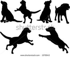 Royalty free silhouette clip art of a set of six silhouetted dogs sitting, standing, running and playing. This dog stock silhouette image was designed and digitally rendered by KJ Pargeter.