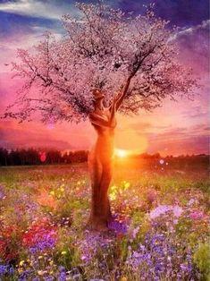 Art Et Nature, Image Nature, Nature Artwork, Nature Tree, Nature Paintings, Beautiful Nature Pictures, Beautiful Nature Scenes, Beautiful Nature Wallpaper, Amazing Nature