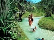 Eli Creek on Fraser Island - you must go there!