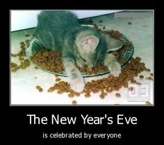 Funny New Years Eve Picture