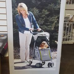 Cute stroller for sale at our Store 🐶🐩🐶 #deslyalejandro #deslyspg #deslyspetgrooming #poodle #baby #stroller #cute #sweetie #baby #amazing #loveit #pooch #animals #babys #babycare #cute #sweet #lovely #santamonica #venicebeach #petstore #petspa #petsupplies #babypanda #spoild #perritos