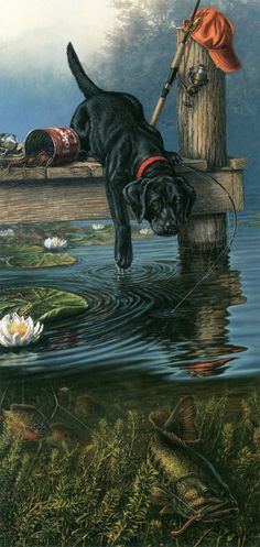 This black lab pup is so excited about the fish in the water that he knocks over the bait and rods to try and get after them. Hunting Art, Fish Art, Wildlife Art, Animal Paintings, Dog Art, Decoupage, Illustration Art, Illustrations, Original Paintings