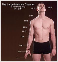 Large Intestine channel
