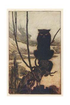 The Black Cat, from The Brothers Grimm Fairy Tales Arthur Rackham Purchase this Artwork Arthur Rackham, Art And Illustration, Book Illustrations, Fantasy Kunst, Fantasy Art, Brothers Grimm, Grimm Fairy Tales, Fairytale Art, Vintage Cat