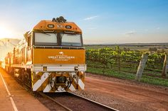 The Great Southern's maiden travel season will see the Great Southern depart on 16 journeys from 6 December to 27 January 2020.  Contact us to plan your Australian Rail Adventure from Adelaide to Brisbane - info@exclusivetravelgroup.com  #theexclusivetravelgroup