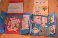 great lapbook ideas and sites to get you started. fantastic teaching tool
