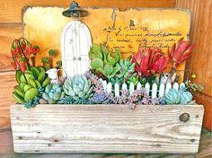棚の画像 by keicomaさん   棚と姫秋麗とサブセシリスとイリアと火祭りと乙女心とブルーリボンと野ばらの精とフーケリーとコチドレン ゴルビューと多肉植物と多肉箱庭と多肉植物の寄せ植えアイデアコンテストと今日の一枚とアレンジとガーデニングと小さな世界とビンテージ感