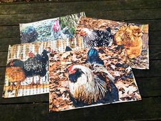 Indoor/Outdoor Placemats featuring chickens #2, set of 4