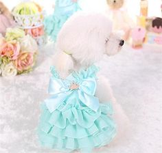 PetsLove Pet Dresses Doggie Skirt Princess Cat Clothes Do…