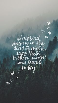 My lockscreens - the beatles quote backgrounds, wallpaper iphone quotes songs, iphone background quotes Wallpaper Hipster, Movies Wallpaper, Wallpaper Iphone Quotes Backgrounds, Iphone Wallpaper, Pretty Backgrounds For Iphone, Trendy Wallpaper, The Words, Song Quotes, Life Quotes