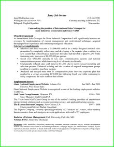 Technical Resume Sample  Create Your Own Custom Proposal Using