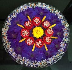 Purple,red,yellow flowers...