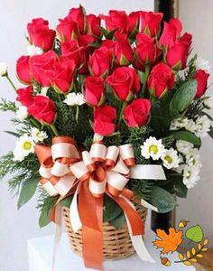 ayaan by maritza Rose Flower Wallpaper, Flowers Gif, Beautiful Rose Flowers, Love Flowers, Valentine Flower Arrangements, Rose Arrangements, Flower Pictures, Flower Boxes, Rose Bouquet