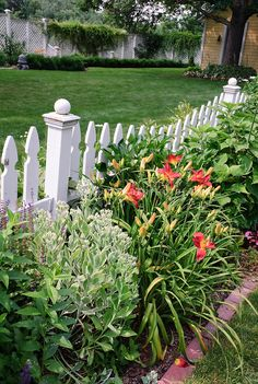 Sedum, daylilies, picket fence, backyard | Plant & Flower Stock Photography: GardenPhotos.com