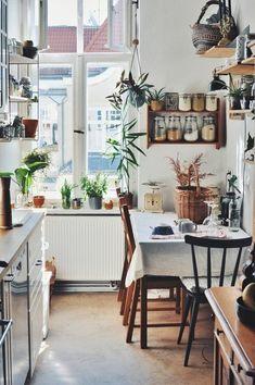 5 Trends aus dem Juli | SoLebIch.de Foto: frau_seekuh #solebich #küche #ideen  #pflanzen #wandgestaltung  #ordnung  #einrichtung #gestalten #arbeitsplatte #dekoration #renovieren #kitchen #interior #interiorideas