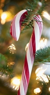 Check Out 17 Candy Cane Decor Ideas For Christmas. Candy canes are cool and tasty Christmas symbols that always remind of the holidays and bring a strong Christmas feel. Candy Cane Christmas, Black Christmas Trees, Noel Christmas, Christmas Ornaments, Christmas Ideas, Beautiful Christmas, Christmas Bedroom, Christmas Fireplace, Christmas Wreaths
