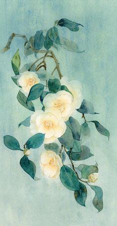 Pencil Illustration, Childrens Books, Sculptures, Sketches, Animation, Watercolor, Camellia, Floral, Flowers