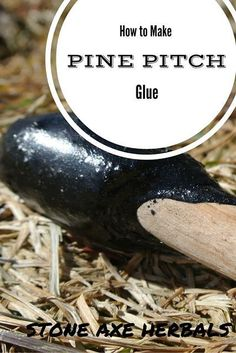 Herbal Medicine Stone Axe Herbals: How to Make Pine Pitch Survival Life, Survival Food, Homestead Survival, Wilderness Survival, Camping Survival, Outdoor Survival, Survival Prepping, Survival Skills, Emergency Preparedness