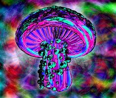Trippy Shroom Art Print