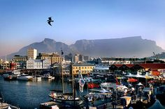 Cape Town's V Waterfront is dotted with hotels, restaurants, gift shops and more; shopping and eating all in one. Cape Town South Africa, Travel Articles, Pacific Northwest, Dream Vacations, Seattle Skyline, North West, Gift Shops, Explore, Country