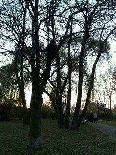 Park Wyspiańskiego