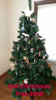 What is Frugal about a Christmas Tree?