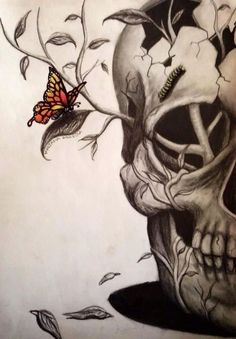 Butterfly, skull