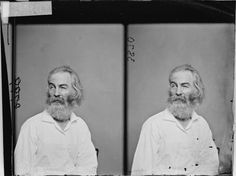 Walt Whitman by Matthew Brady