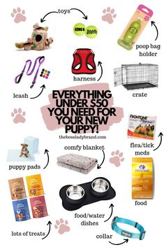 Everything You Need to Buy for Your New Puppy - Boss Lady Brand Are you getting a new puppy? Here are all the things you need to get for them to make that new transition much easier. Training Your Puppy, Dog Training Tips, Labrador Puppy Training, Puppy Training Schedule, Labrador Dogs, Brain Training, Puppies Tips, Dogs And Puppies, Puppies Stuff