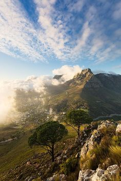 Lions Head, Cape Town, Western Cape, South Africa