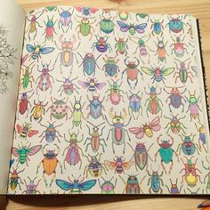 Garden Bugs Secret Gardens Johanna Basford Illustration Coloring Books Art Therapy Beetles Celine Enchanted