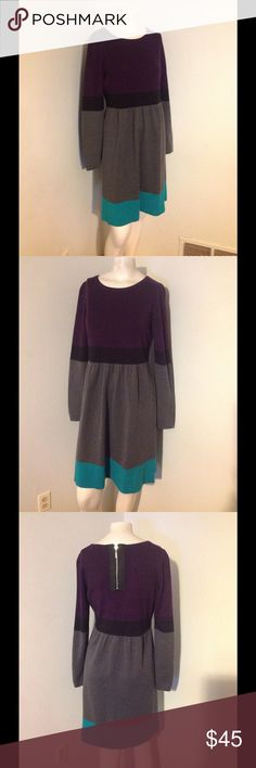 """Eliza J Color Block Sweater Dress M Very pretty Eliza J sweater dress. Colorblock style with an exposed back zipper. Made of acrylic/spandex. For some reason the tag was removed. Seems to fit like a medium/large. Please check the measurements. Fabric is stretchy. Nice condition. Chest 35"""" Waist 32"""" Hips 44"""" Eliza J Dresses"""