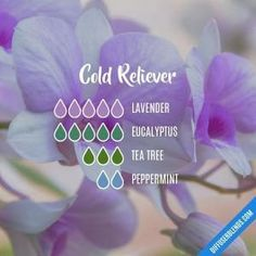 young living essential oils recipes for skin Essential Oil Diffuser Blends, Doterra Essential Oils, Essential Oil Cold Remedy, Essential Oil Blends For Colds, Doterra Diffuser, Essential Oil Combinations, Diffuser Recipes, Aromatherapy Oils, Diffusers