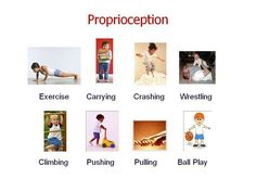 Proprioception - heavy work (proprioception exercises for ADHD). different activities that are engaging and give feedback Sensory Motor, Autism Sensory, Sensory Diet, Sensory Play, Proprioceptive Activities, Sensory Activities, Sensory Disorder, Sensory Processing Disorder, Occupational Therapy