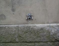 Rue de Strasbourg à Nantes - murs de l'hôtel de Ville.  Vu également dans le Bestiaire Presse Océan par Stéphane Pajot !
