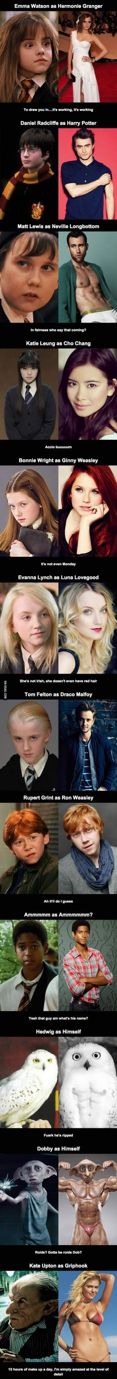 Harry Potter and glorious puberty