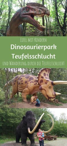 Beautiful Places To Travel, Beautiful World, Holidays Germany, Dino Park, Cool Pictures, Beautiful Pictures, Real Estate Logo Design, Eifel, Austria Travel