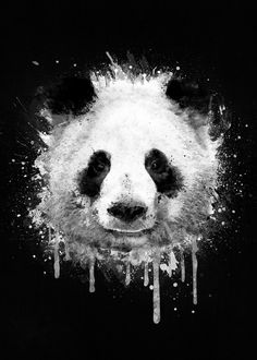 COOL ABSTRACT GRAFFITI WATERCOLOR PANDA