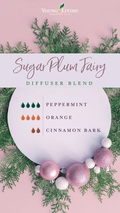 Essential Oils Guide, Essential Oil Uses, Doterra Essential Oils, Essential Oils For Anxiety, Young Living Oils, Young Living Essential Oils, Essential Oils Christmas, Essential Oil Combinations, Essential Oil Diffuser Blends