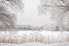 Winter in Helsinki by Mikael Rantalainen