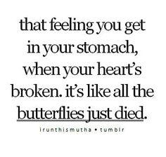 Dying butterflies