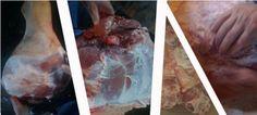Zbog velike zainteresiranosti za članke o soljenju mesaovog puta smo odlučili malo detaljnije opisati sami proces pripreme mesa za soljenje i sušenja mesa.  Mi u dalmatinci najčešće radimo suho soljenje mesa bez salamure, št