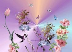 Animated Flowers and Butterflies   Hummingbirds, Flowers & Butterflies photo FlowersButterflies.gif