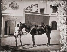 Vintage India, Royal Court, Royal Life, Jaipur India, Old Paintings, Royal Palace, British Library, India Travel, The Life