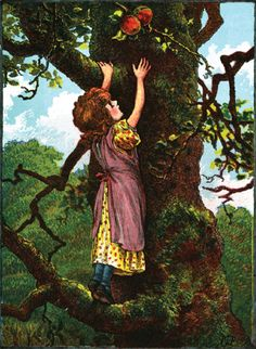 As I Went up the Apple Tree - Irish Children's Songs - Ireland - Mama Lisa's World: Children's Songs and Rhymes from Around the World - Intro Image Irish People, Daisy Girl Scouts, Irish Girls, Apple Tree, World Music, Fleas, Freckles, Family History, Celtic
