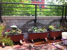 How to Make an Earthbox Yourself | #Horticool #ApartmentGardening #Gardening