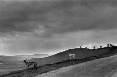 Josef Koudelka, Spain, 1971-1978.