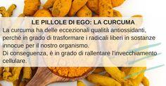 Le pillole di Ego! www.egoestetica.it