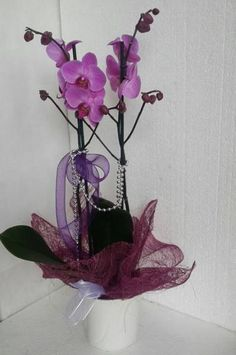 Mor Sevgisi 99,90 TL Çift Kök Mor Orkide En Uygun Fiyata Tıkla  Satın AL http://hemencicekal.net/urun/86-mor-sevgisi-cift-kok-orkide.html